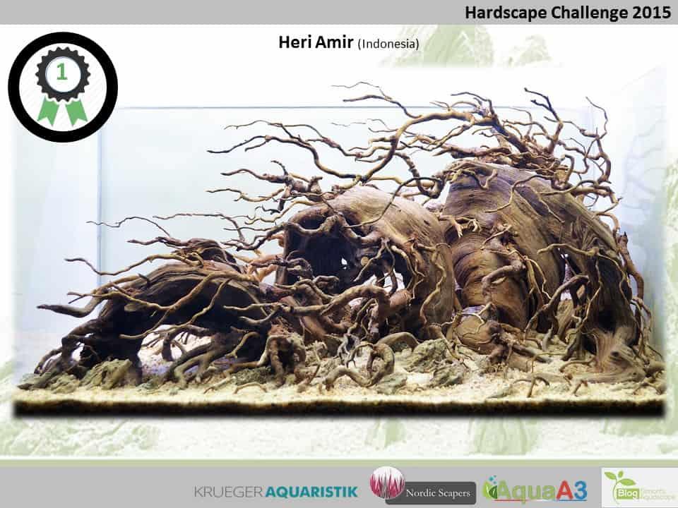Hardscape Challenge 2015 - Die Ergebnisse (Galerie) 1