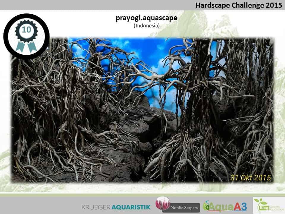 Hardscape Challenge 2015 - Die Ergebnisse (Galerie) 10