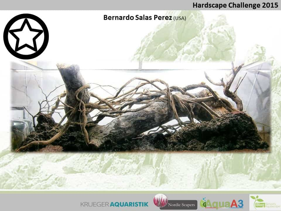 Hardscape Challenge 2015 - Die Ergebnisse (Galerie) 103