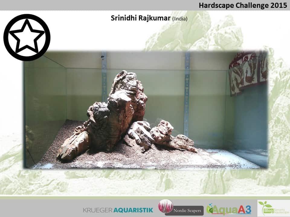 Hardscape Challenge 2015 - Die Ergebnisse (Galerie) 108