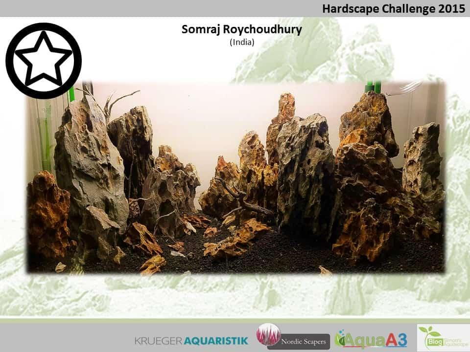 Hardscape Challenge 2015 - Die Ergebnisse (Galerie) 120