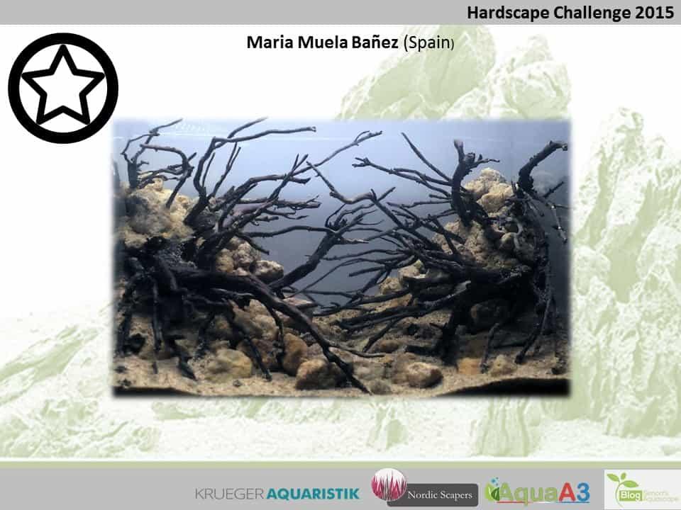 Hardscape Challenge 2015 - Die Ergebnisse (Galerie) 131
