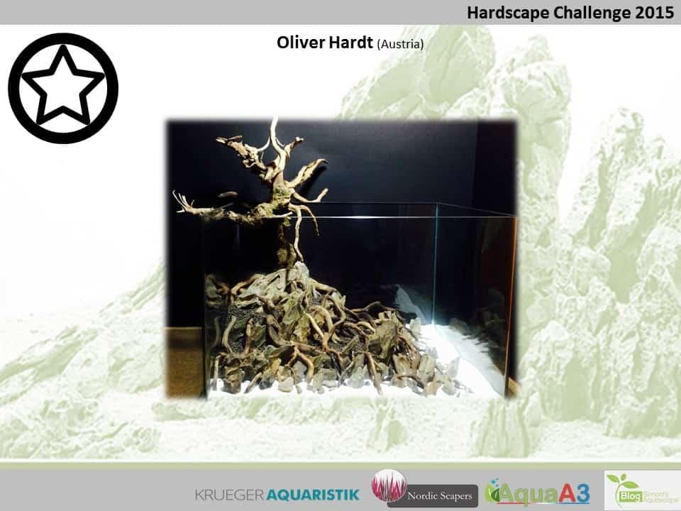Hardscape Challenge 2015 - Die Ergebnisse (Galerie) 132
