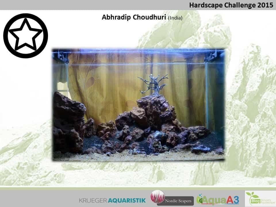 Hardscape Challenge 2015 - Die Ergebnisse (Galerie) 142