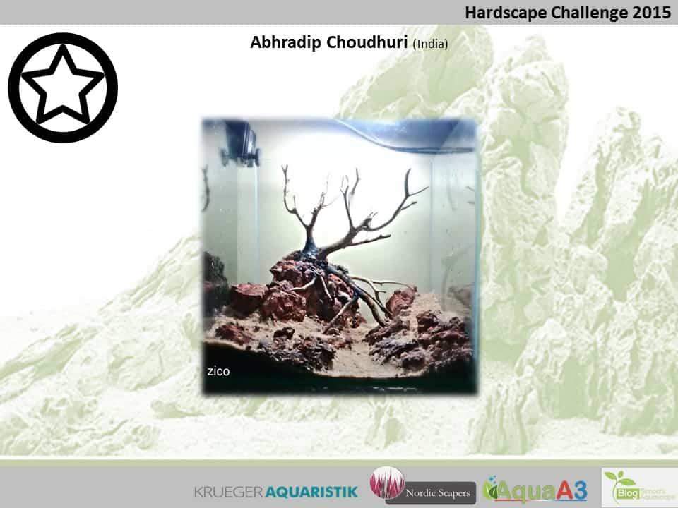 Hardscape Challenge 2015 - Die Ergebnisse (Galerie) 144