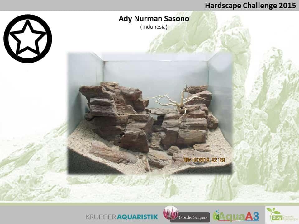 Hardscape Challenge 2015 - Die Ergebnisse (Galerie) 154