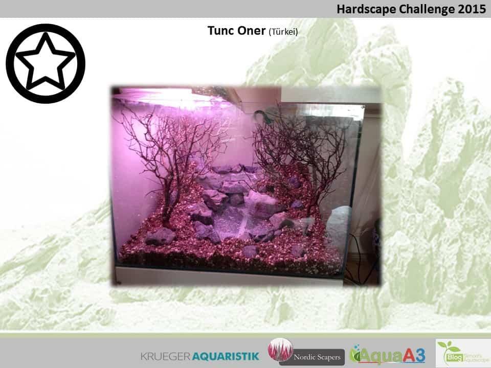 Hardscape Challenge 2015 - Die Ergebnisse (Galerie) 161