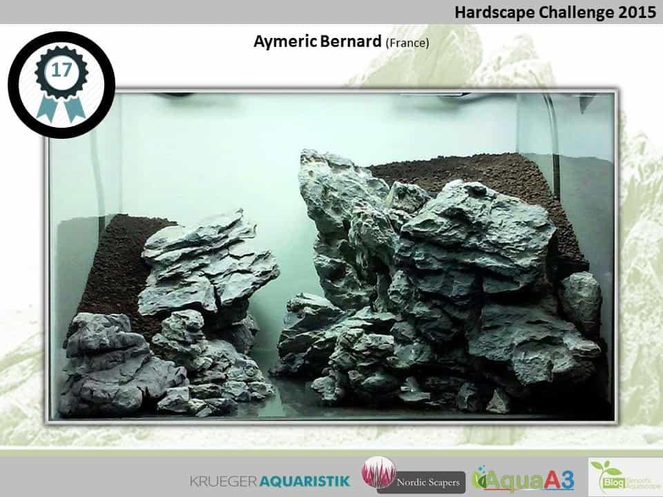 Hardscape Challenge 2015 - Die Ergebnisse (Galerie) 17