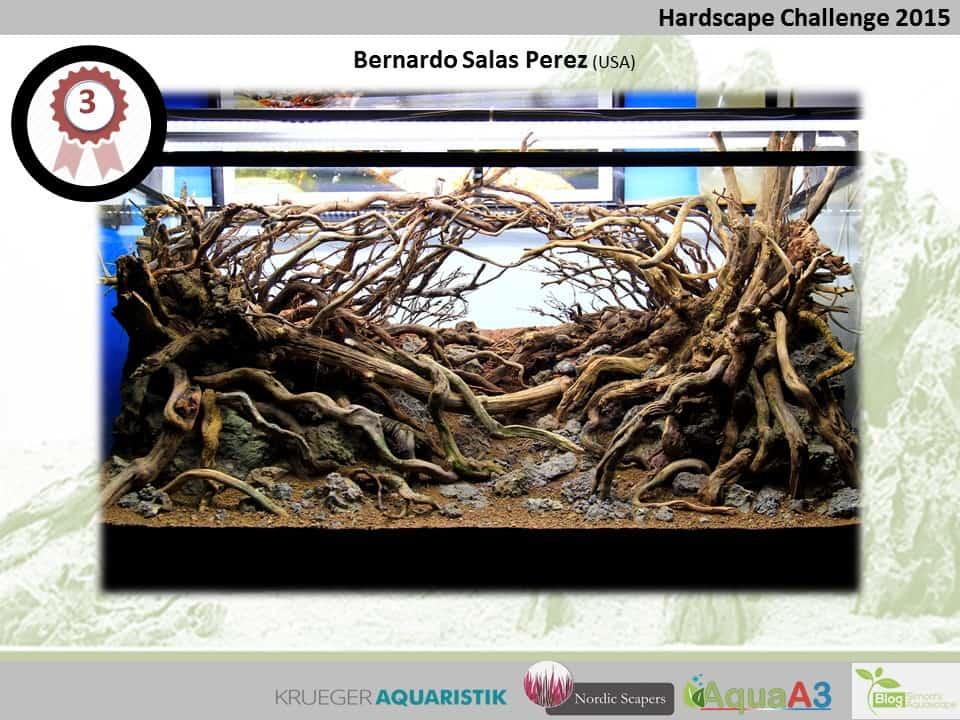 Hardscape Challenge 2015 - Die Ergebnisse (Galerie) 3