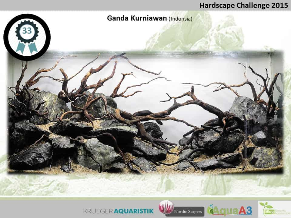 Hardscape Challenge 2015 - Die Ergebnisse (Galerie) 33