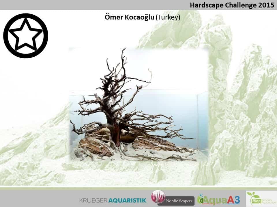 Hardscape Challenge 2015 - Die Ergebnisse (Galerie) 41