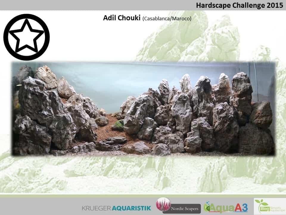 Hardscape Challenge 2015 - Die Ergebnisse (Galerie) 47