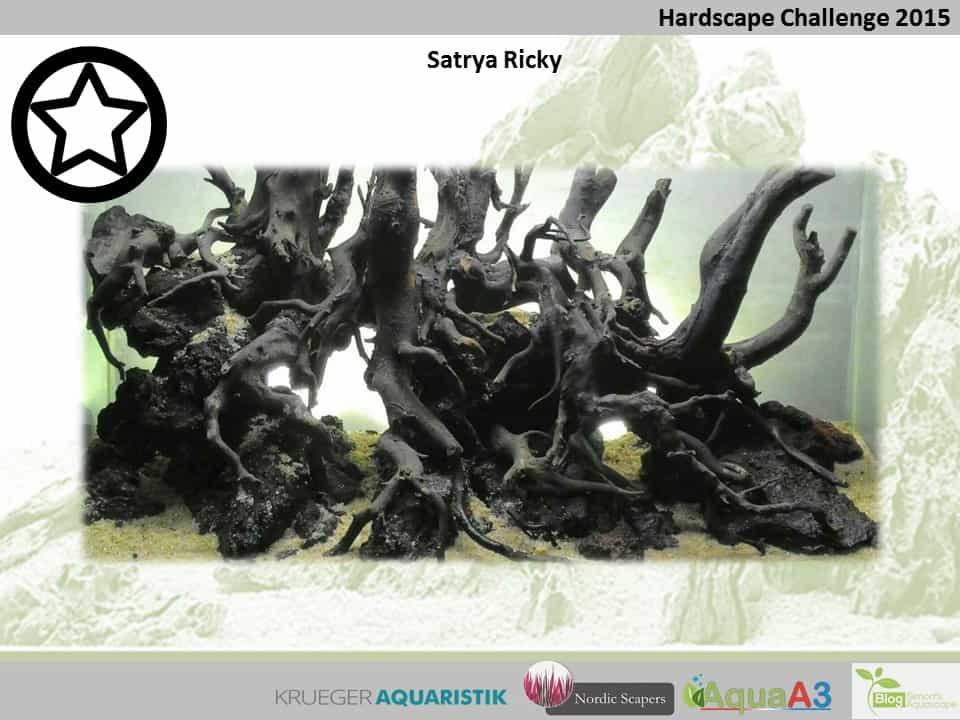 Hardscape Challenge 2015 - Die Ergebnisse (Galerie) 58