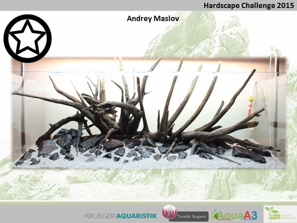 Hardscape Challenge 2015 - Die Ergebnisse (Galerie) 61