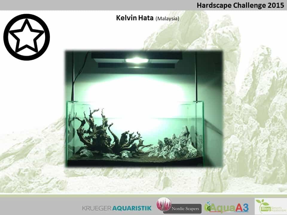 Hardscape Challenge 2015 - Die Ergebnisse (Galerie) 62
