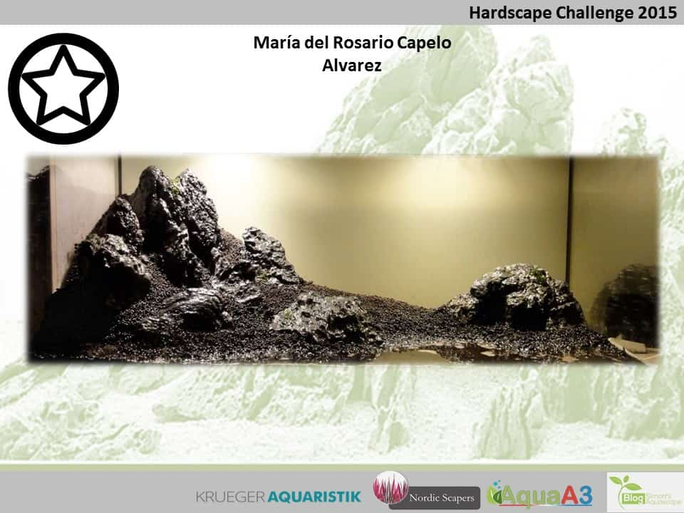Hardscape Challenge 2015 - Die Ergebnisse (Galerie) 65