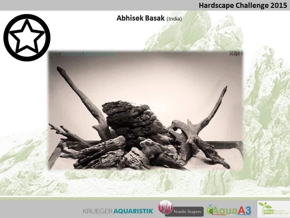 Hardscape Challenge 2015 - Die Ergebnisse (Galerie) 68
