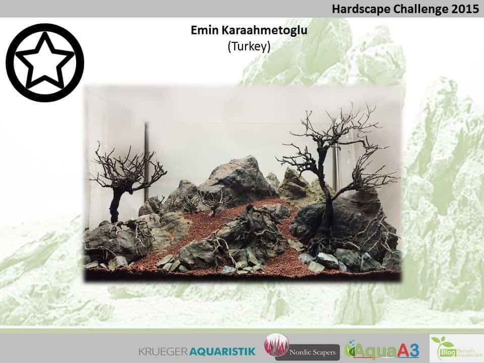 Hardscape Challenge 2015 - Die Ergebnisse (Galerie) 76