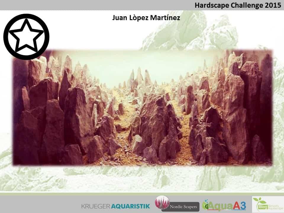 Hardscape Challenge 2015 - Die Ergebnisse (Galerie) 78