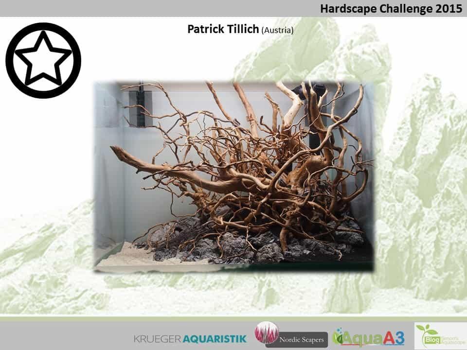 Hardscape Challenge 2015 - Die Ergebnisse (Galerie) 81