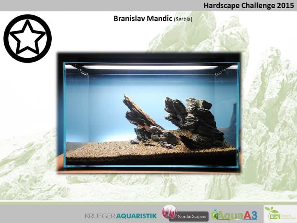 Hardscape Challenge 2015 - Die Ergebnisse (Galerie) 88