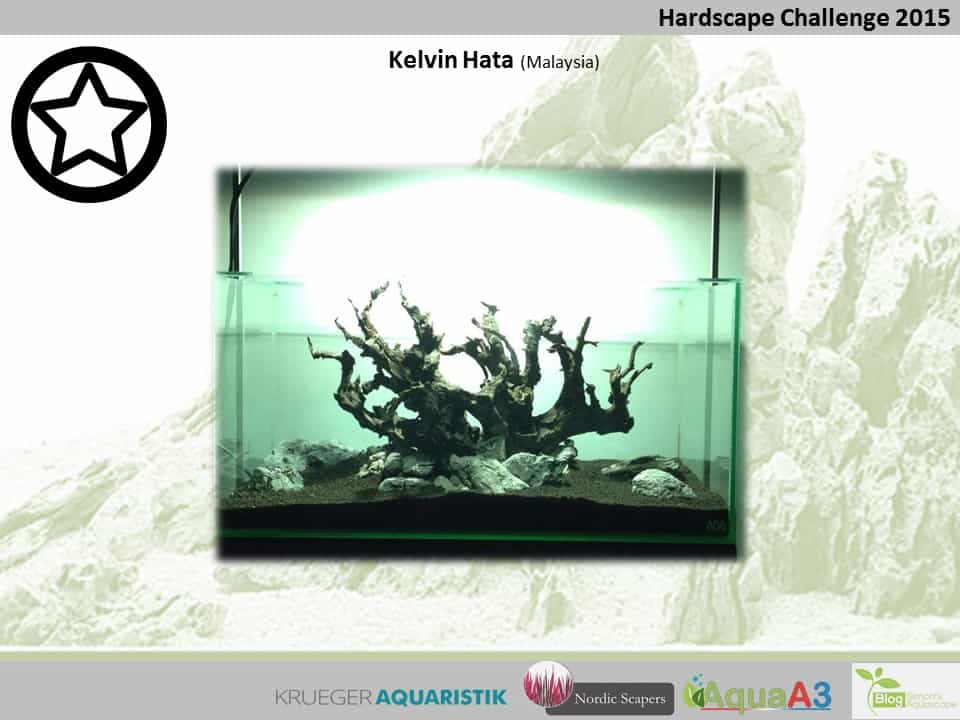 Hardscape Challenge 2015 - Die Ergebnisse (Galerie) 95