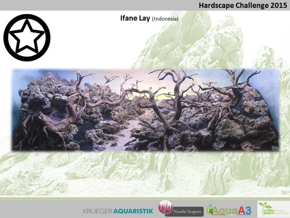 Hardscape Challenge 2015 - Die Ergebnisse (Galerie) 97