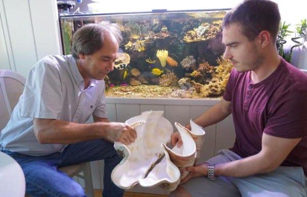 my-fish's Weblink-Empfehlungen 4-2015 2