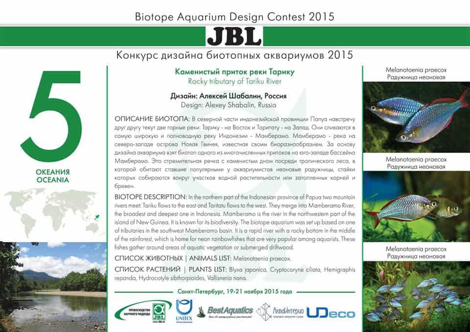 Biotope Aquarium Design Contest 2015 – Das Finale 4