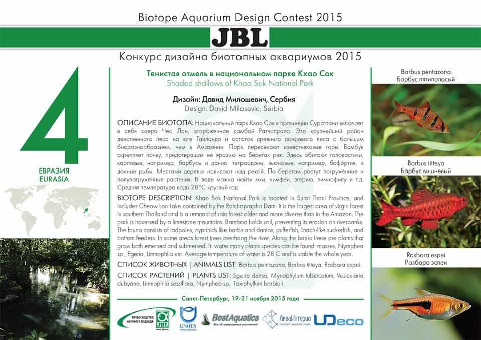 Biotope Aquarium Design Contest 2015 – Das Finale 10