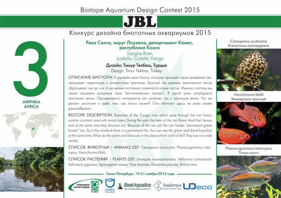 Biotope Aquarium Design Contest 2015 – Das Finale 8