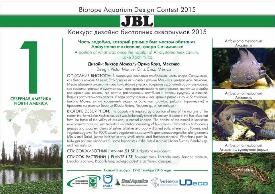 Biotope Aquarium Design Contest 2015 – Das Finale 6