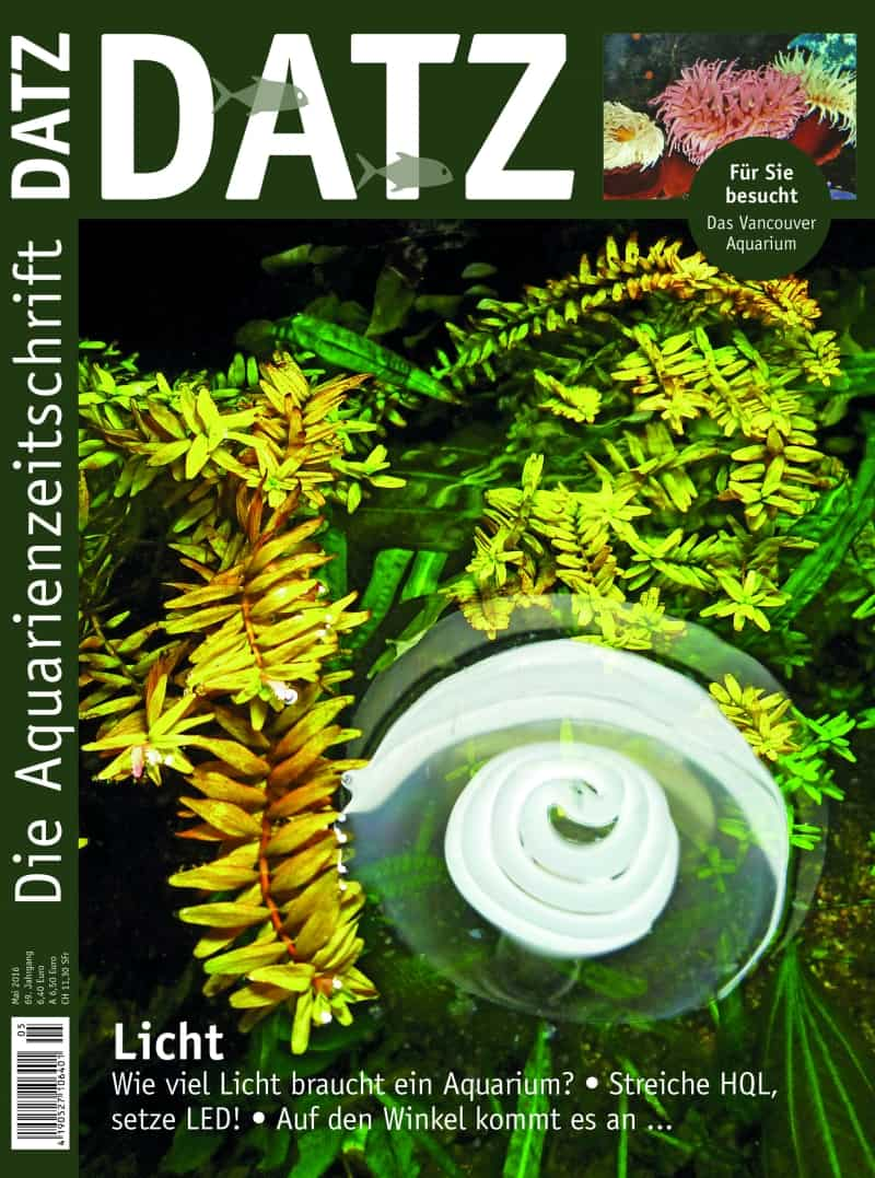 2016-5_Cover_DRUCK