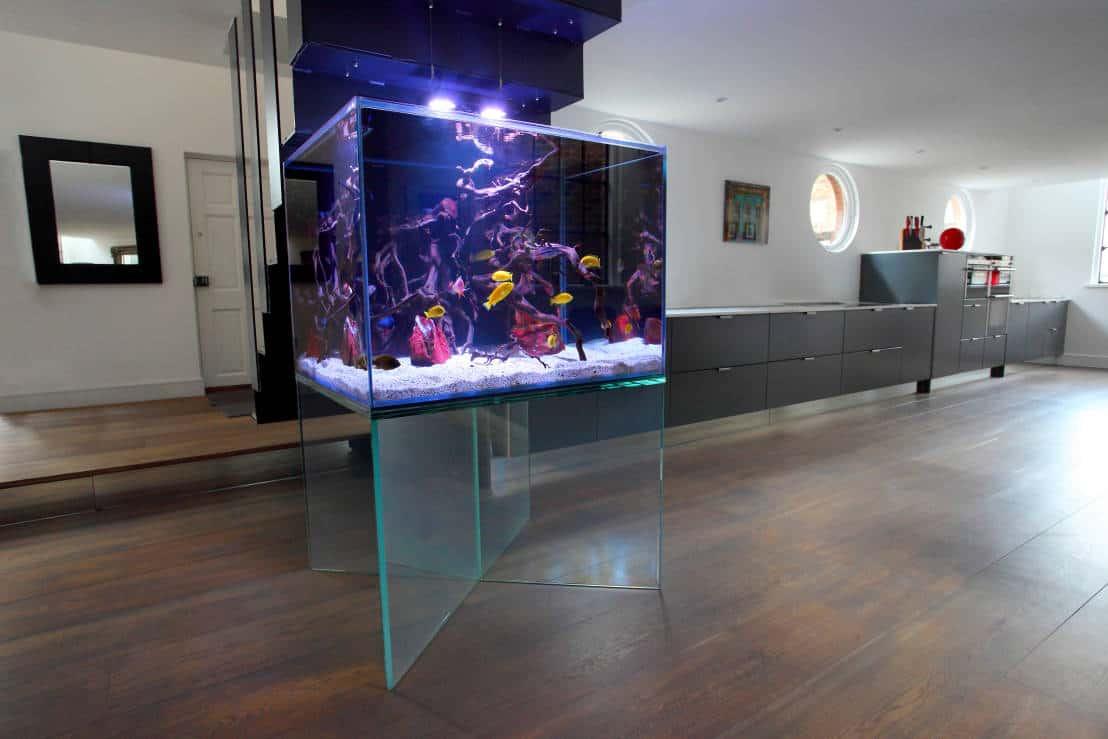 Schwebendes Aquarium homify.de - AQUARIUM ARCHITECTURE