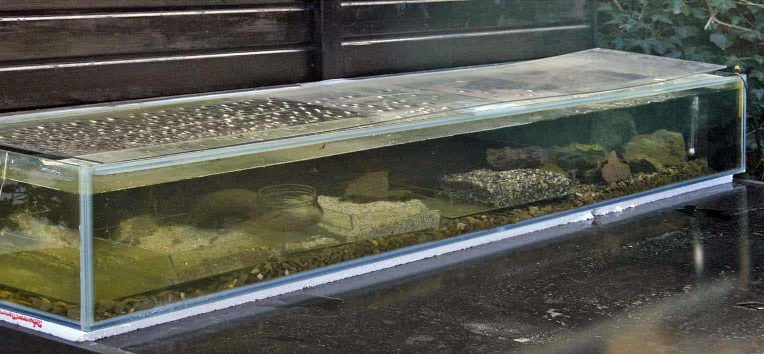 Strömungsbecken mit drei Bodengrundschalen