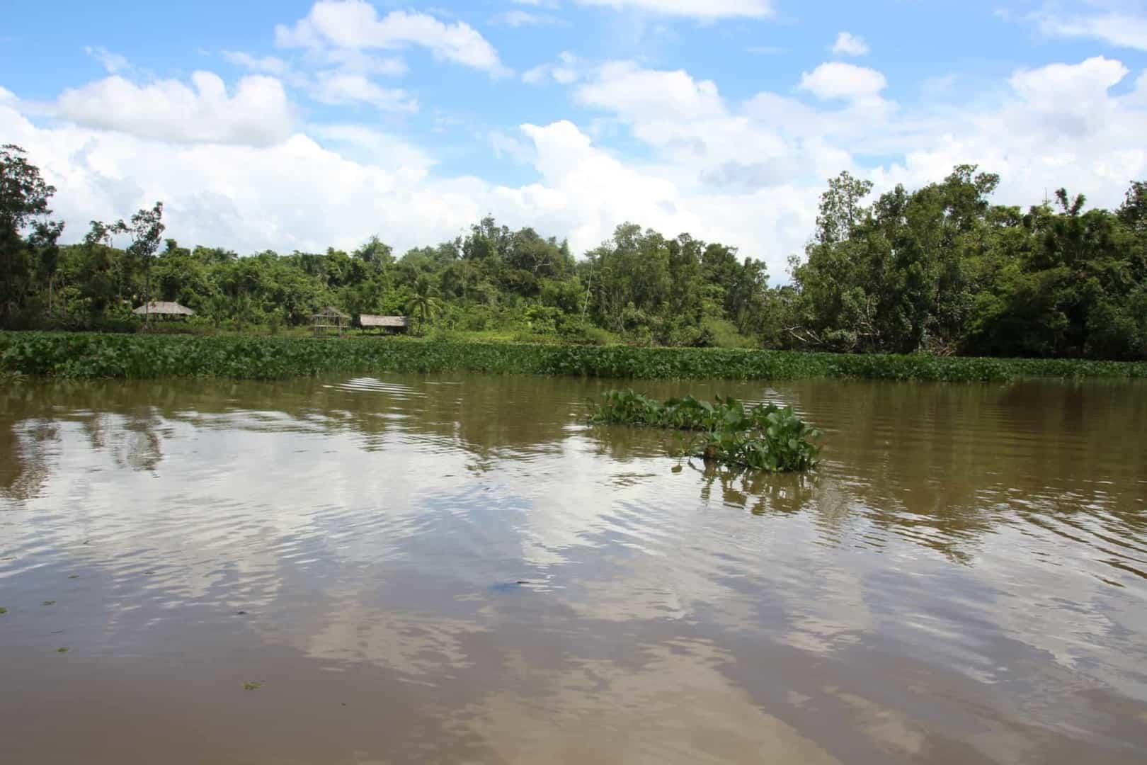 Expedition nach Venezuela: Orinoco Delta und Canaima Teil 3/3 21