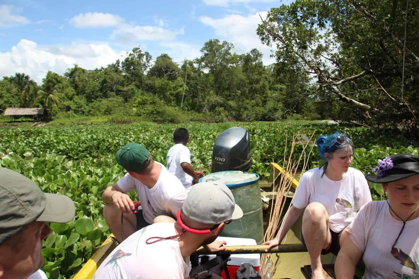 Podcast Episode #100: Expedition zum Orinoco-Delta in Venezuela (Uwe Hartmann) 11