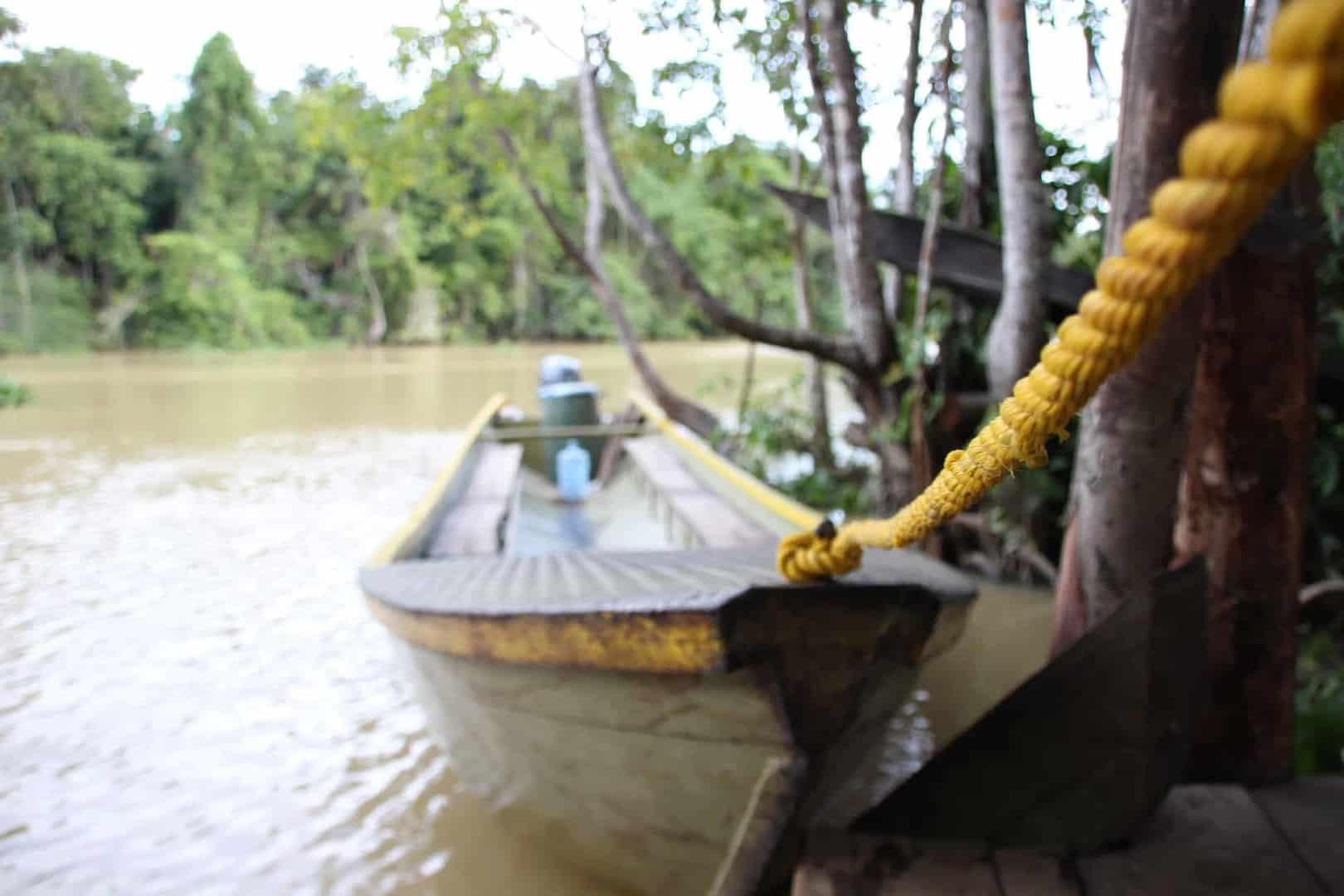 Expedition nach Venezuela: Orinoco Delta und Canaima Teil 1/3 11