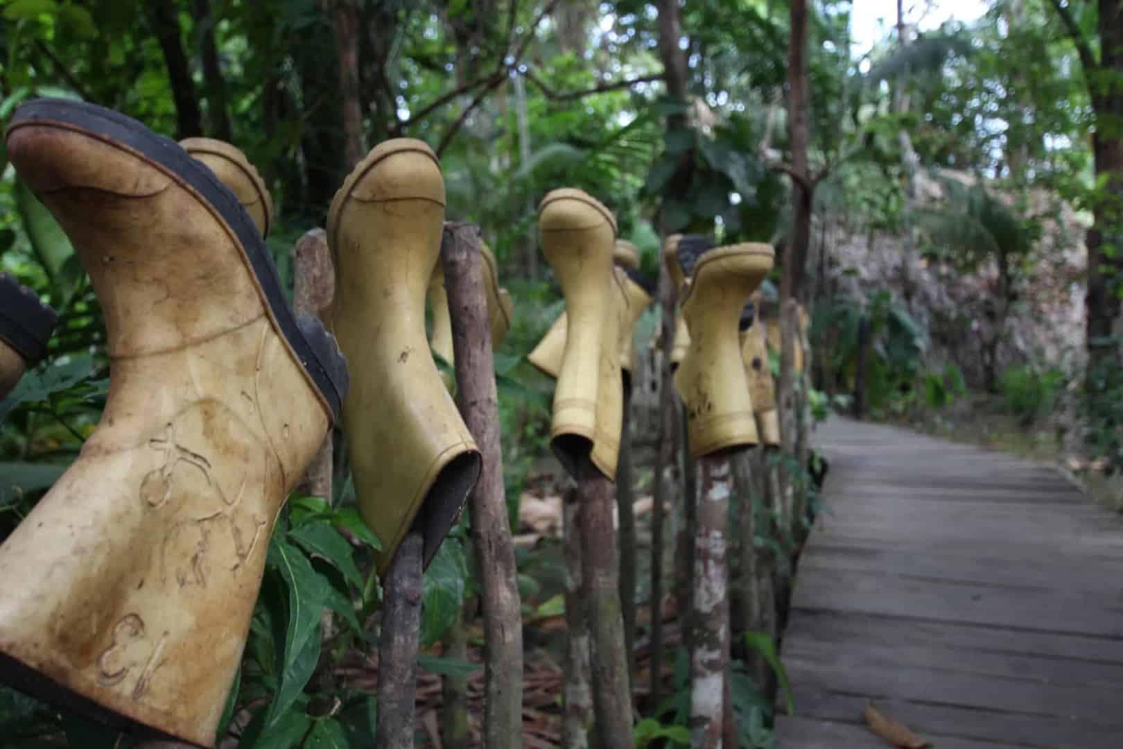 Expedition nach Venezuela: Orinoco Delta und Canaima Teil 2/3 9