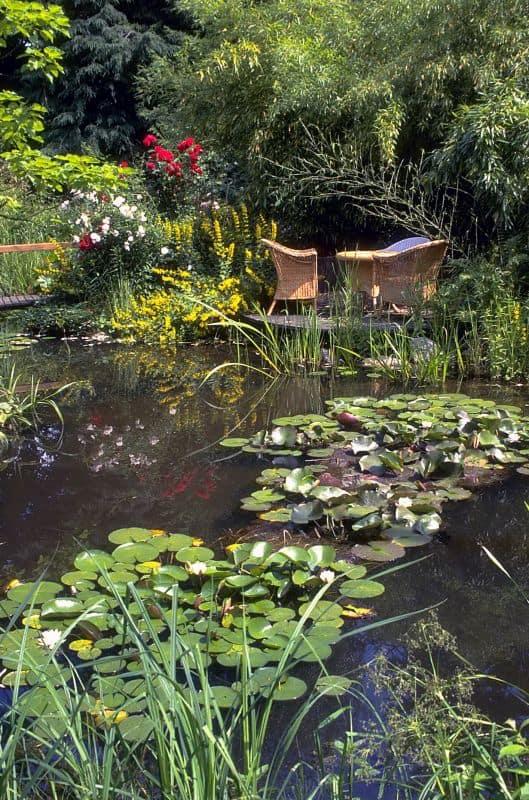 Foto: BGL. - Besonders eindrucksvoll sind Gartenteiche dann, wenn auch die Bepflanzung und Ufergestaltung gut durchdacht und mit der Gesamtfläche abgestimmt wurde.