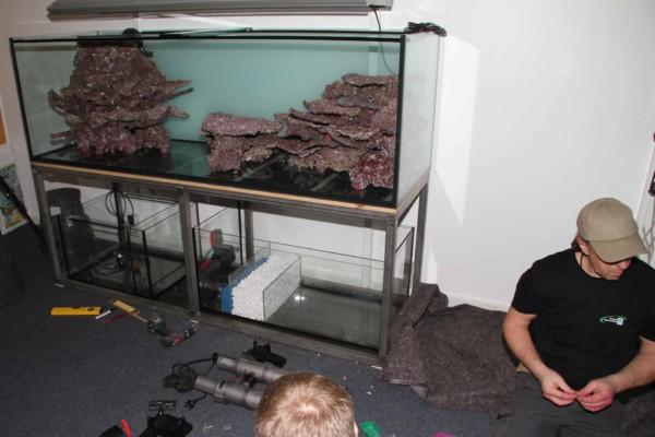 JBL Nachhaltigkeit Nachhaltiges Riffaquarium