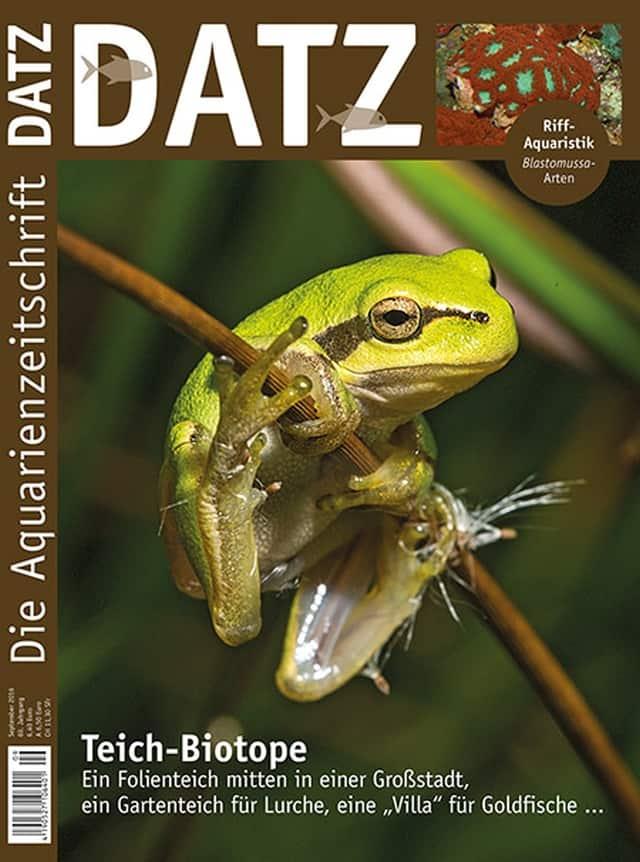 Datz 9 2016