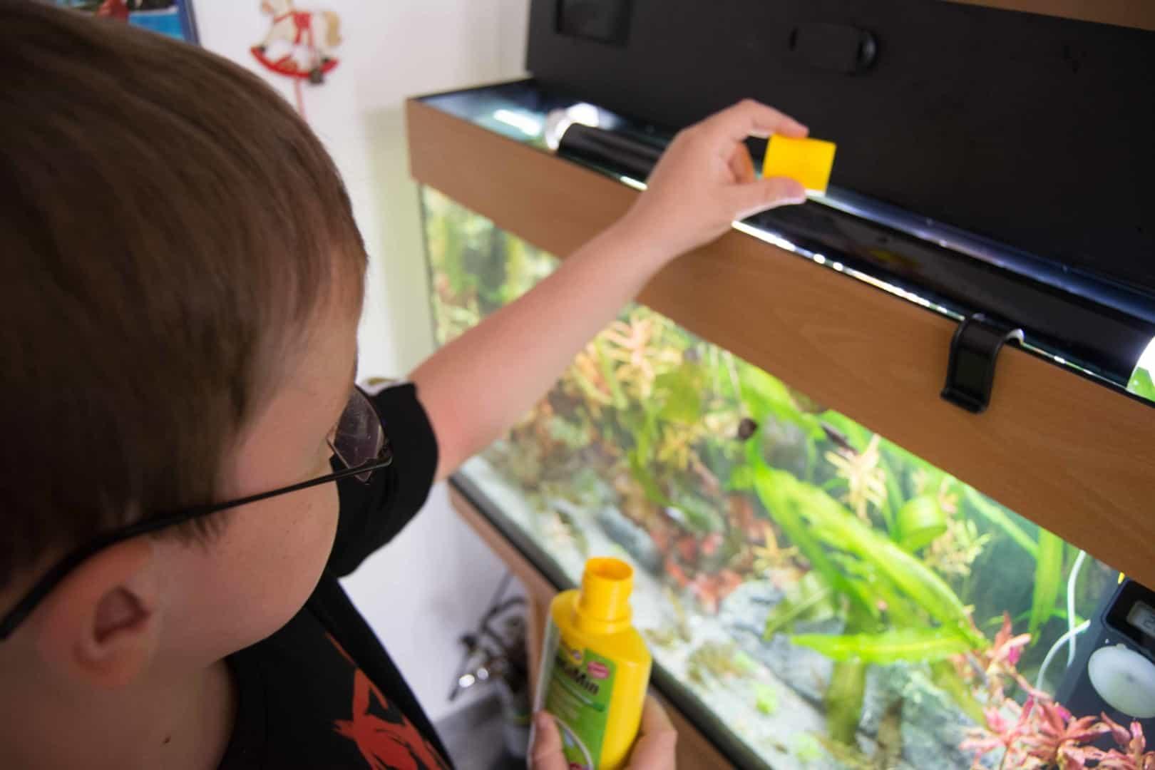 Pflanzenpflege - Dein kleiner Unterwassergarten 2