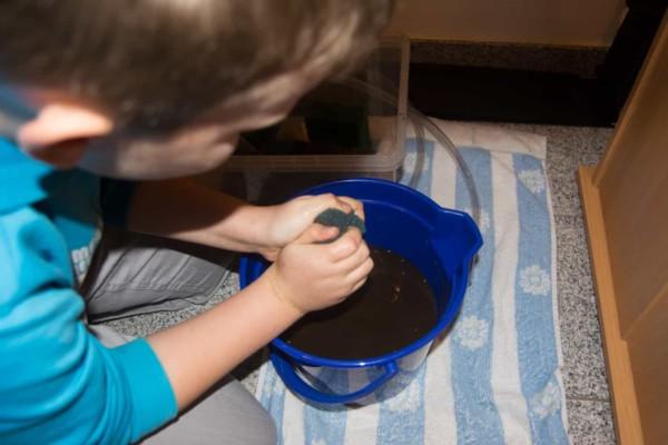 Kids Missverständnis Filter reinigen