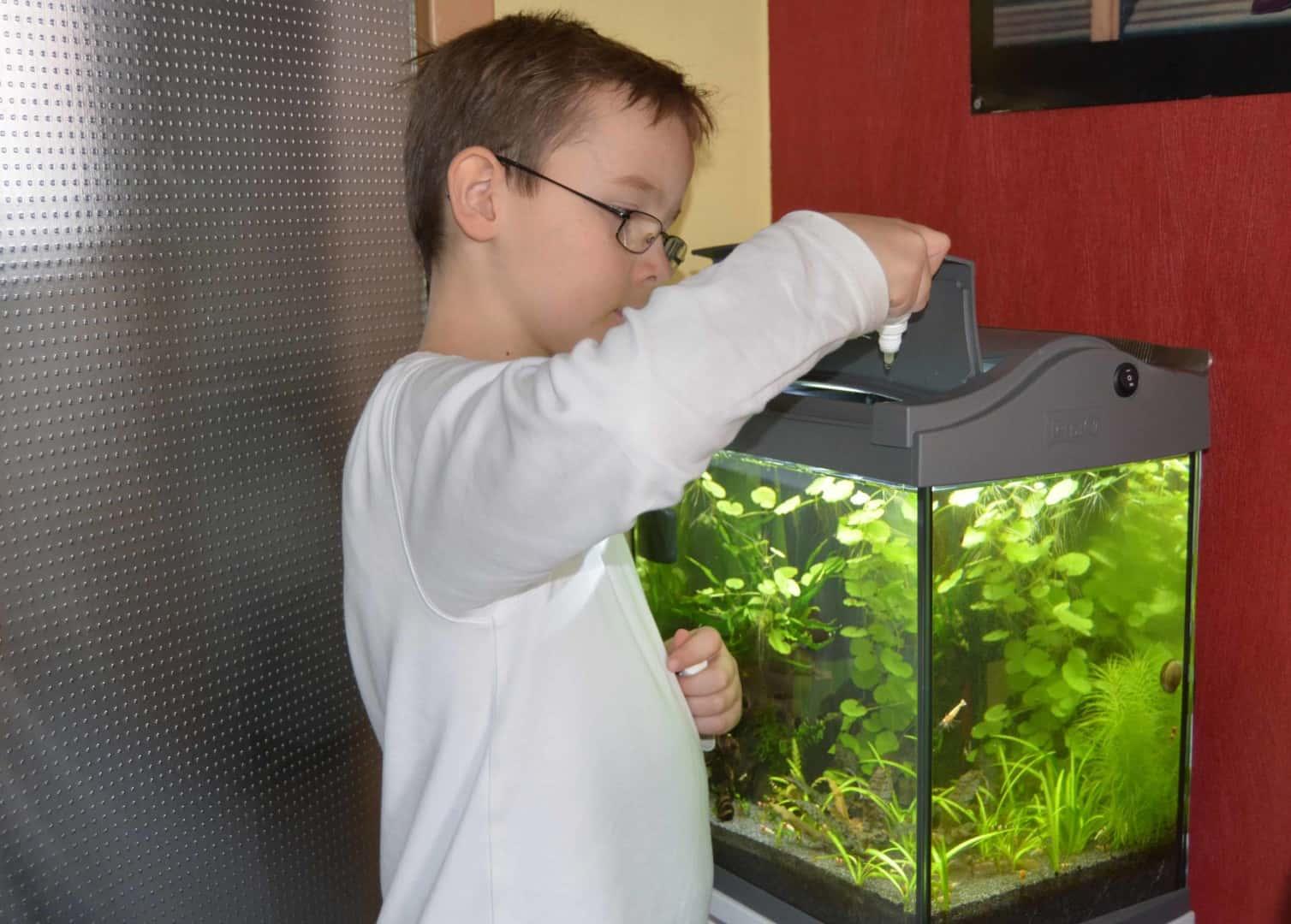 Kids Missverständnis Düngung Algen