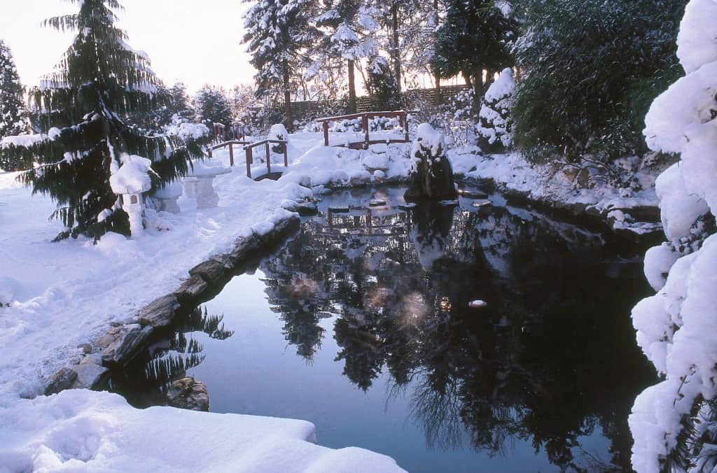winterteich-soell