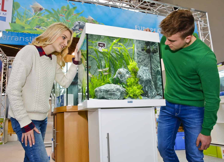 Tierisch was los: Messe Karlsruhe zum fünften Mal Treffpunkt für Tierfreunde 2
