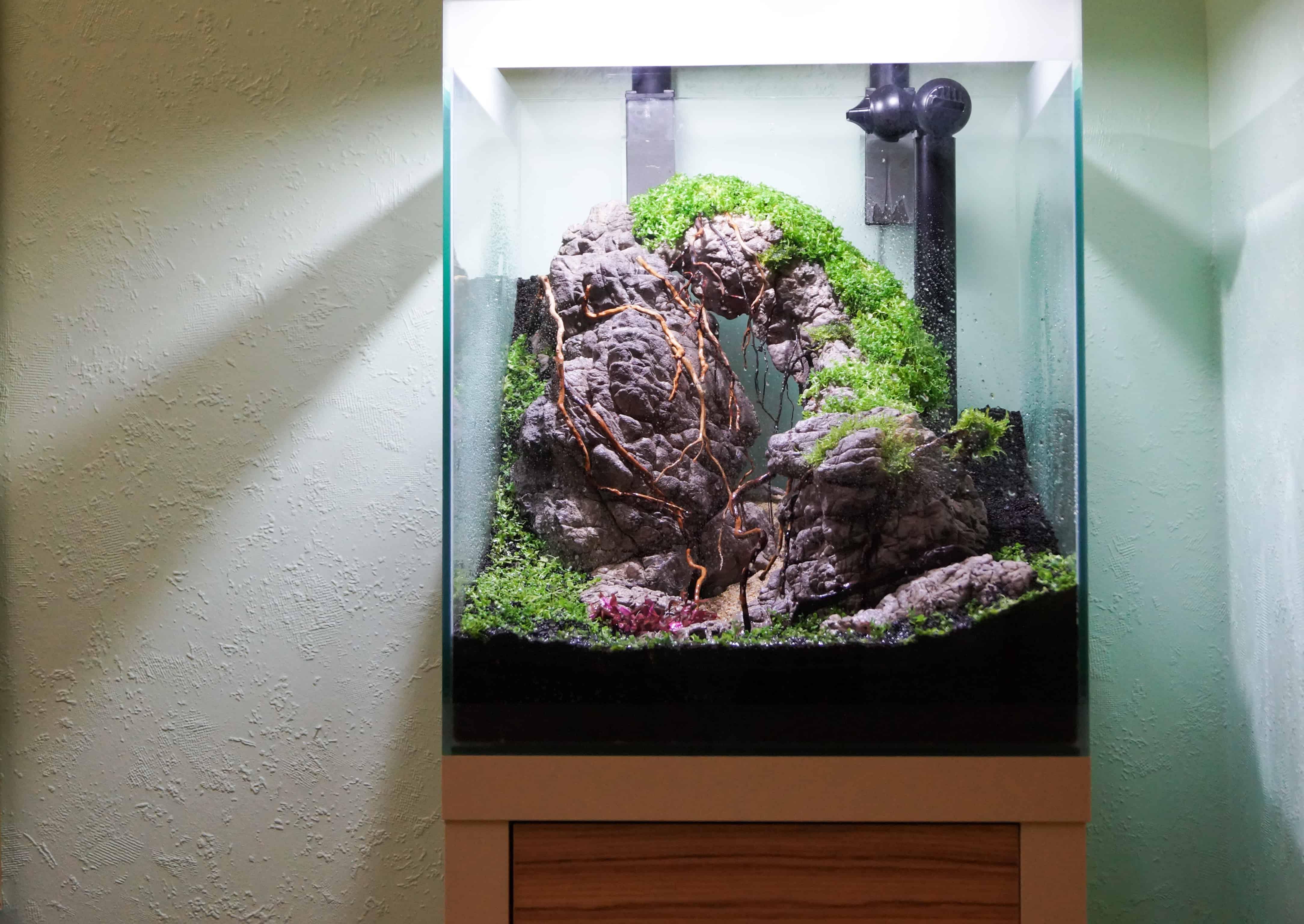 ein kita aquarium de luxe my fish. Black Bedroom Furniture Sets. Home Design Ideas