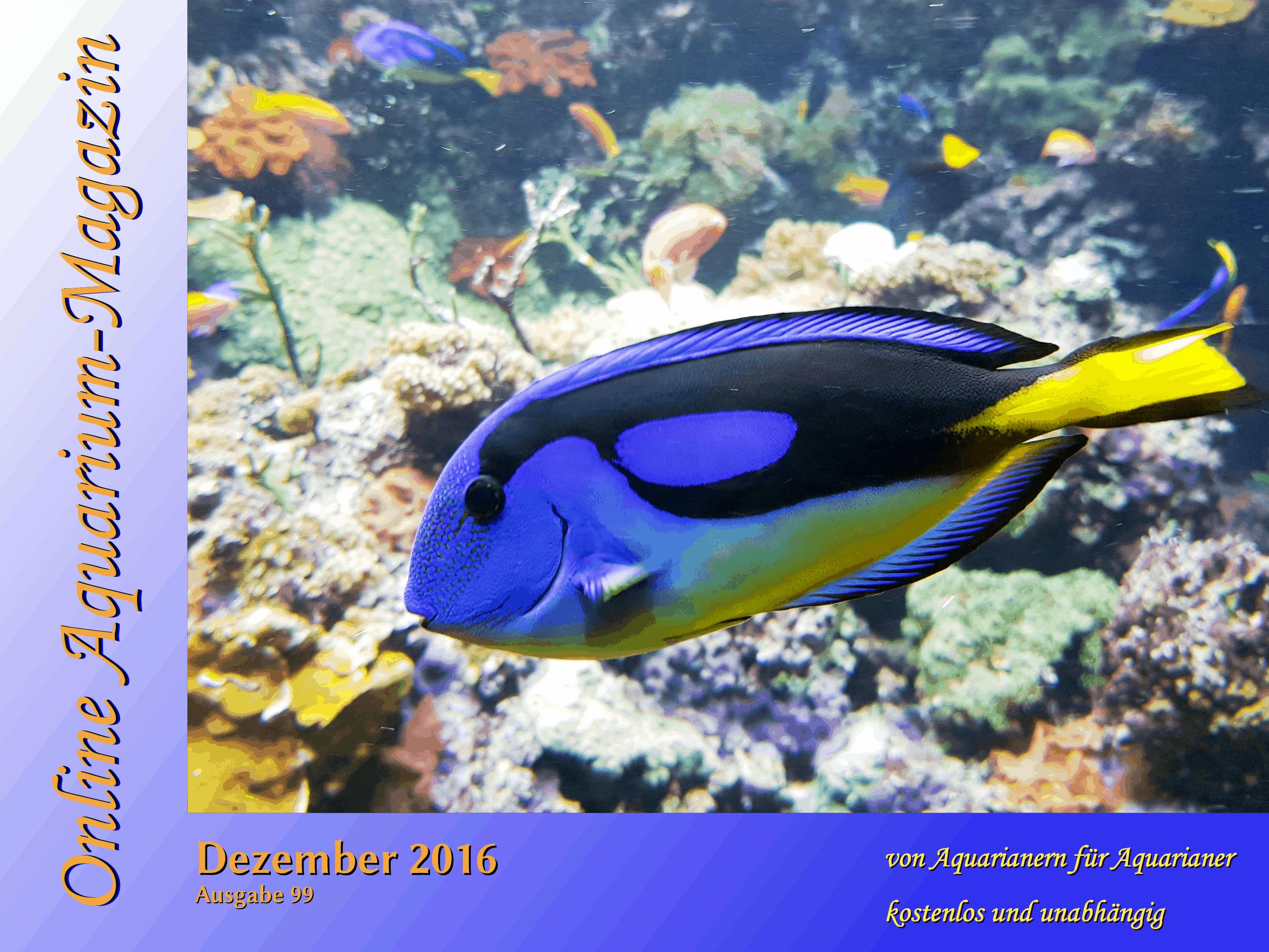 Online Aquarium Magazin Dezember 2016 erschienen 1