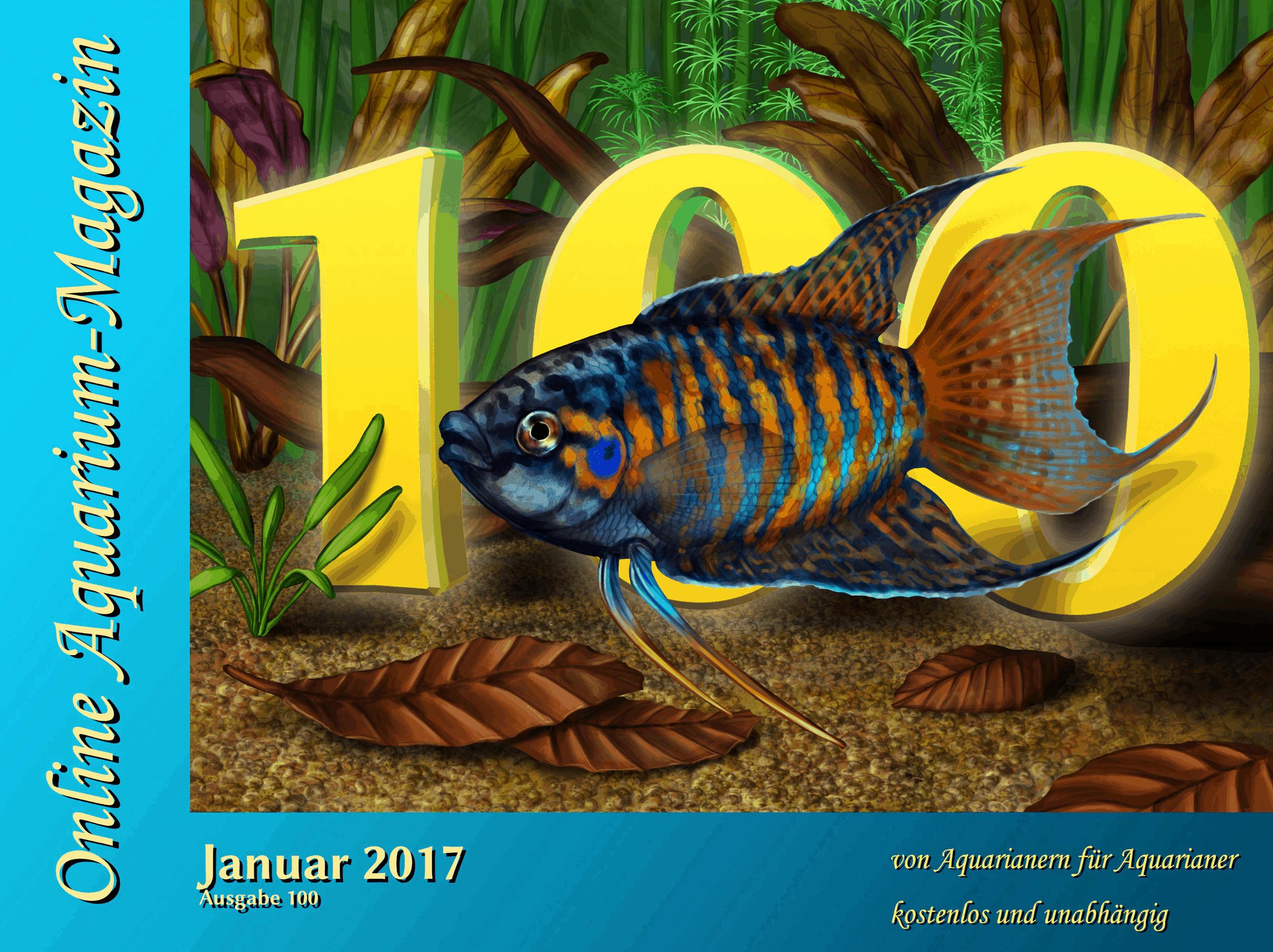 Die 100. Ausgabe des OAM ist erschienen 1